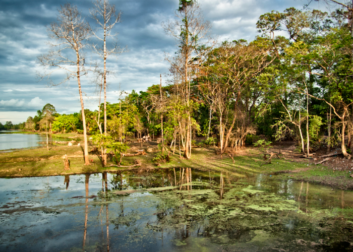Souls' Escapes - Retreats in Nature in Cambodia