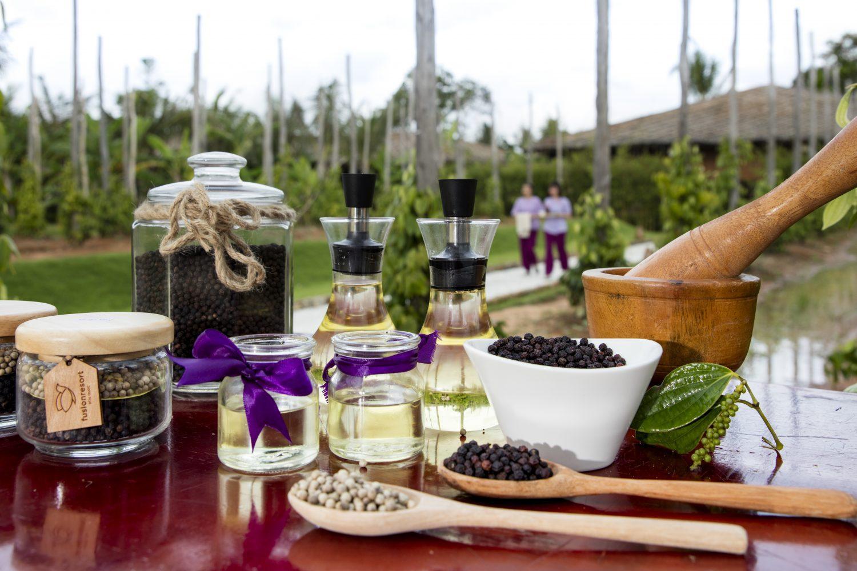 Pepper farm Fusion Resort Phu Quoc