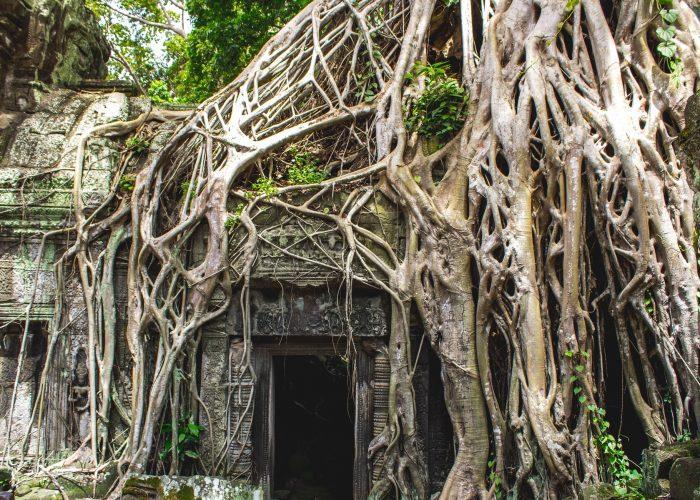 Mindfulness Retreat in Cambodia - Soul's Escapes