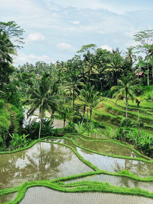 Bali Adventure - Soul's Escapes